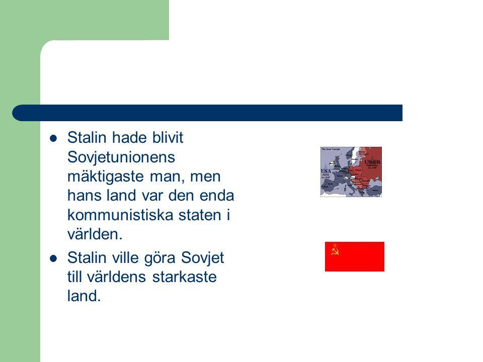 Stalin hade blivit Sovjetunionens mäktigaste man, men hans land var den enda kommunistiska staten i världen.