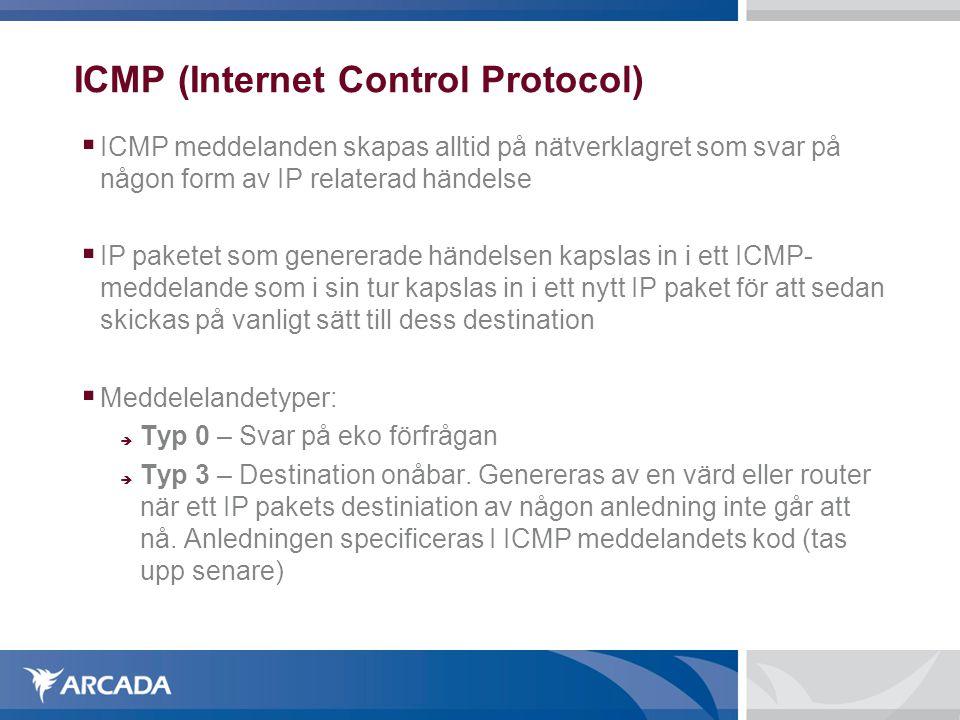 ICMP (Internet Control Protocol)