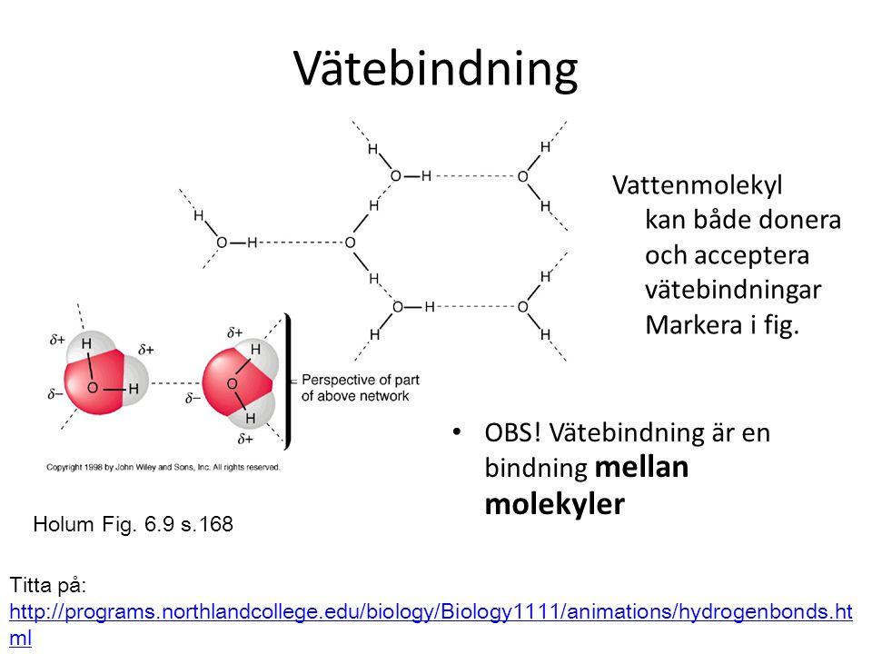 Vätebindning Vattenmolekyl kan både donera och acceptera