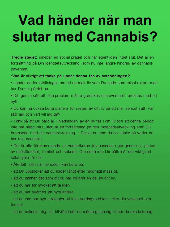 Vad händer när man slutar med Cannabis