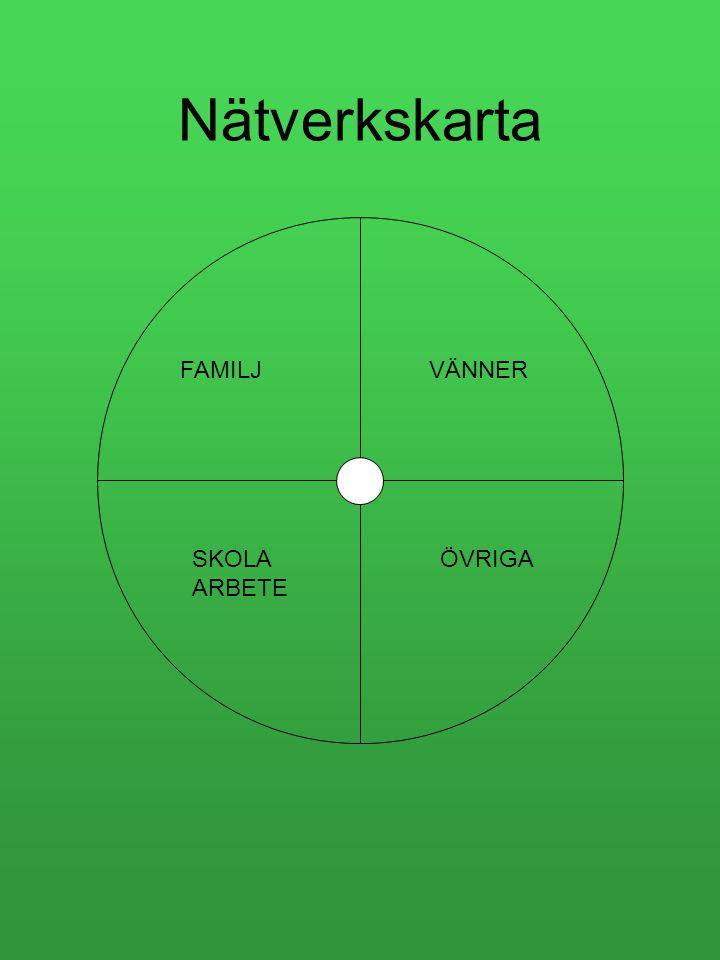 Nätverkskarta FAMILJ VÄNNER SKOLA ARBETE ÖVRIGA