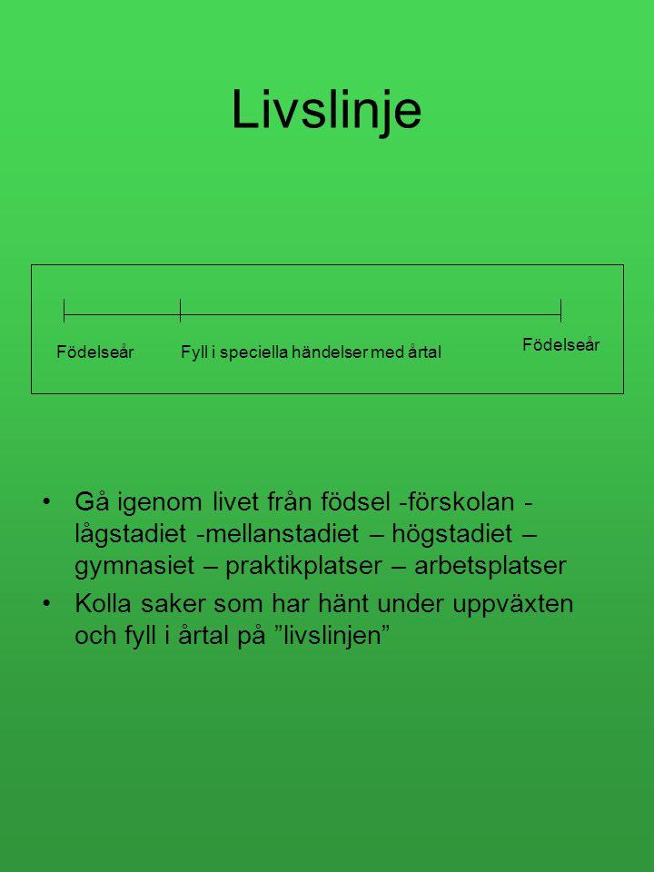 Livslinje Gå igenom livet från födsel -förskolan - lågstadiet -mellanstadiet – högstadiet – gymnasiet – praktikplatser – arbetsplatser.