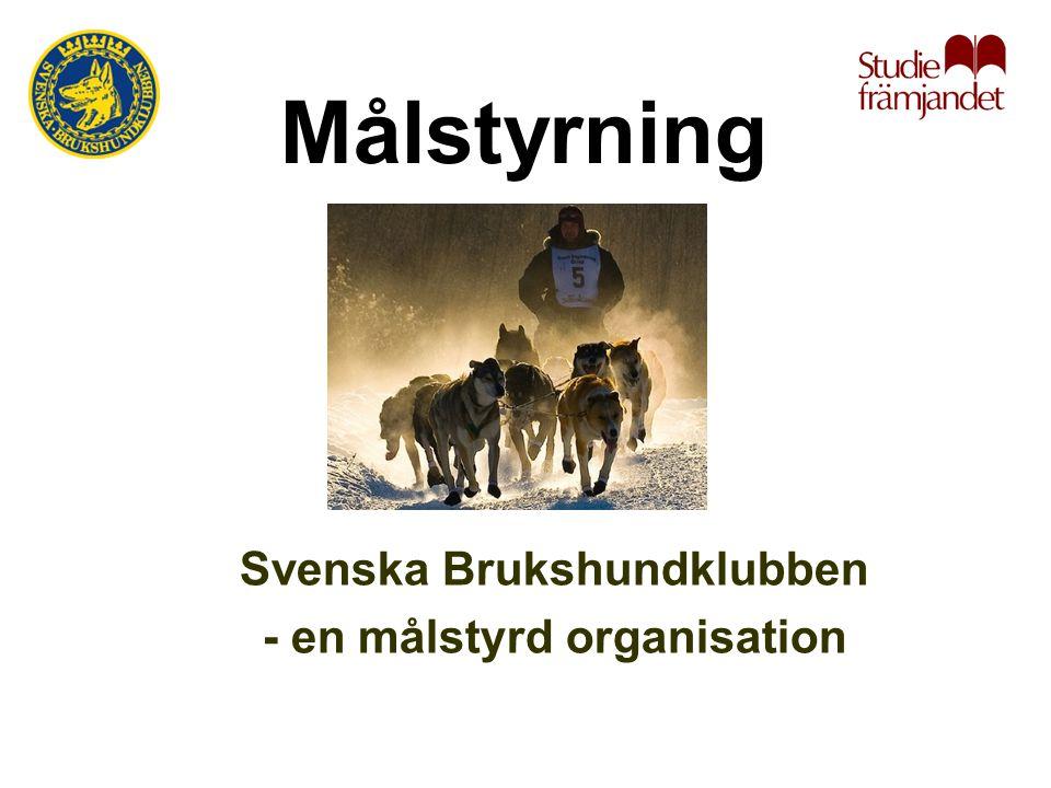 Svenska Brukshundklubben - en målstyrd organisation