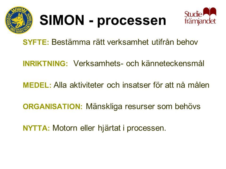 SIMON - processen