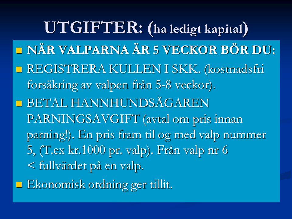 UTGIFTER: (ha ledigt kapital)