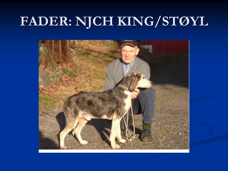 FADER: NJCH KING/STØYL