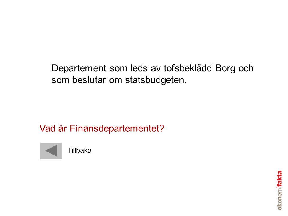 Vad är Finansdepartementet