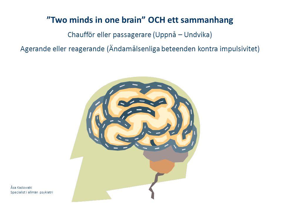 Two minds in one brain OCH ett sammanhang