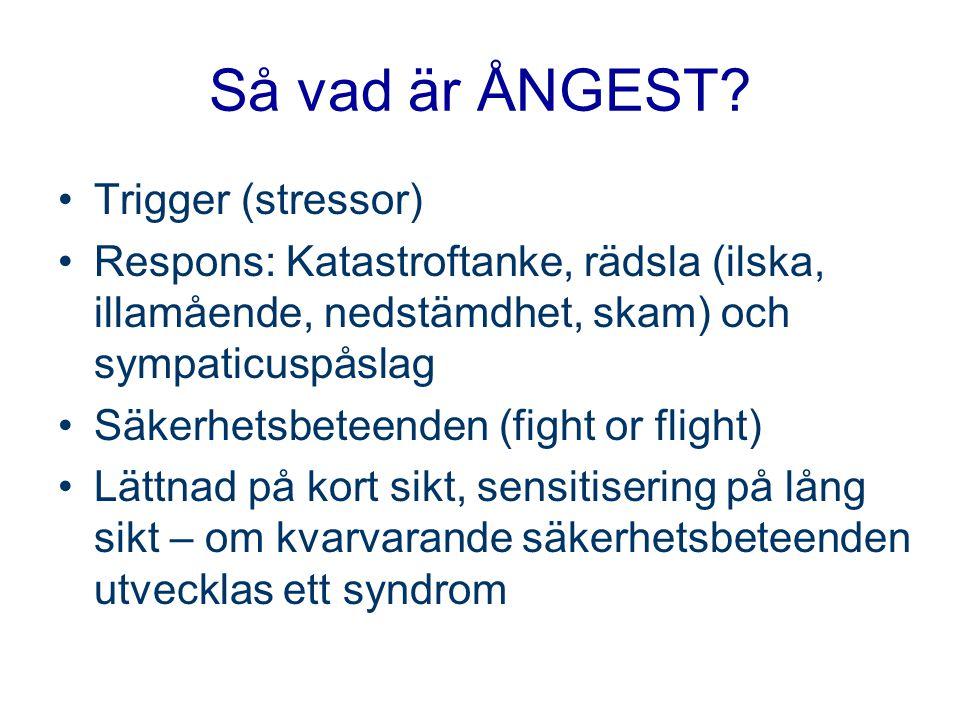 Så vad är ÅNGEST Trigger (stressor)