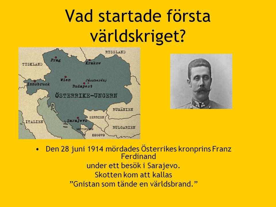 Vad startade första världskriget