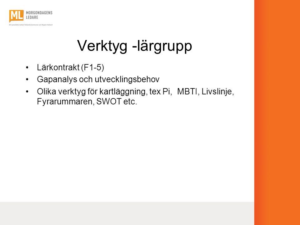 Verktyg -lärgrupp Lärkontrakt (F1-5) Gapanalys och utvecklingsbehov