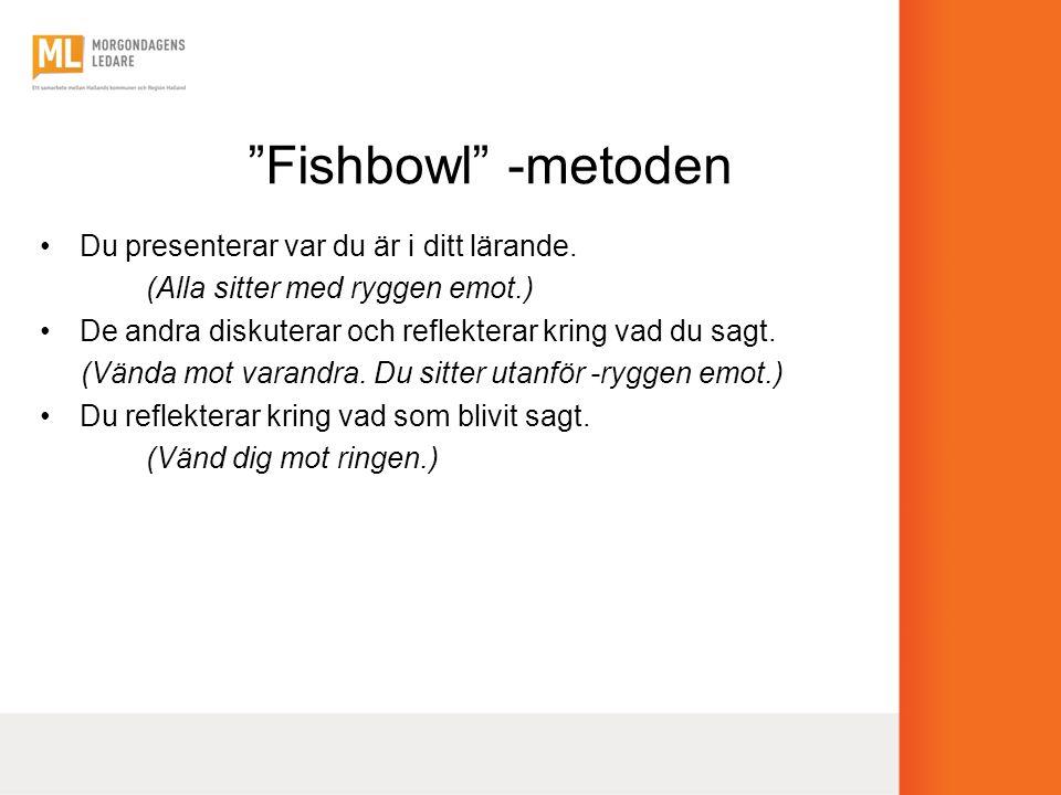 Fishbowl -metoden Du presenterar var du är i ditt lärande.