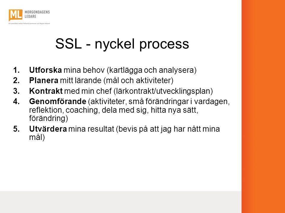 SSL - nyckel process Utforska mina behov (kartlägga och analysera)