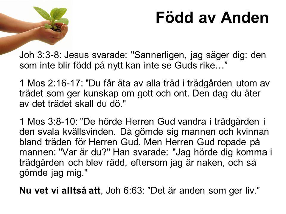 Född av Anden Joh 3:3-8: Jesus svarade: Sannerligen, jag säger dig: den som inte blir född på nytt kan inte se Guds rike…
