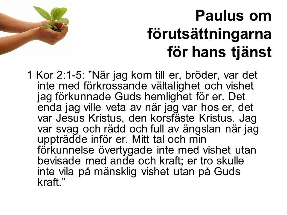 Paulus om förutsättningarna för hans tjänst