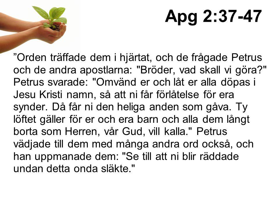 Apg 2:37-47