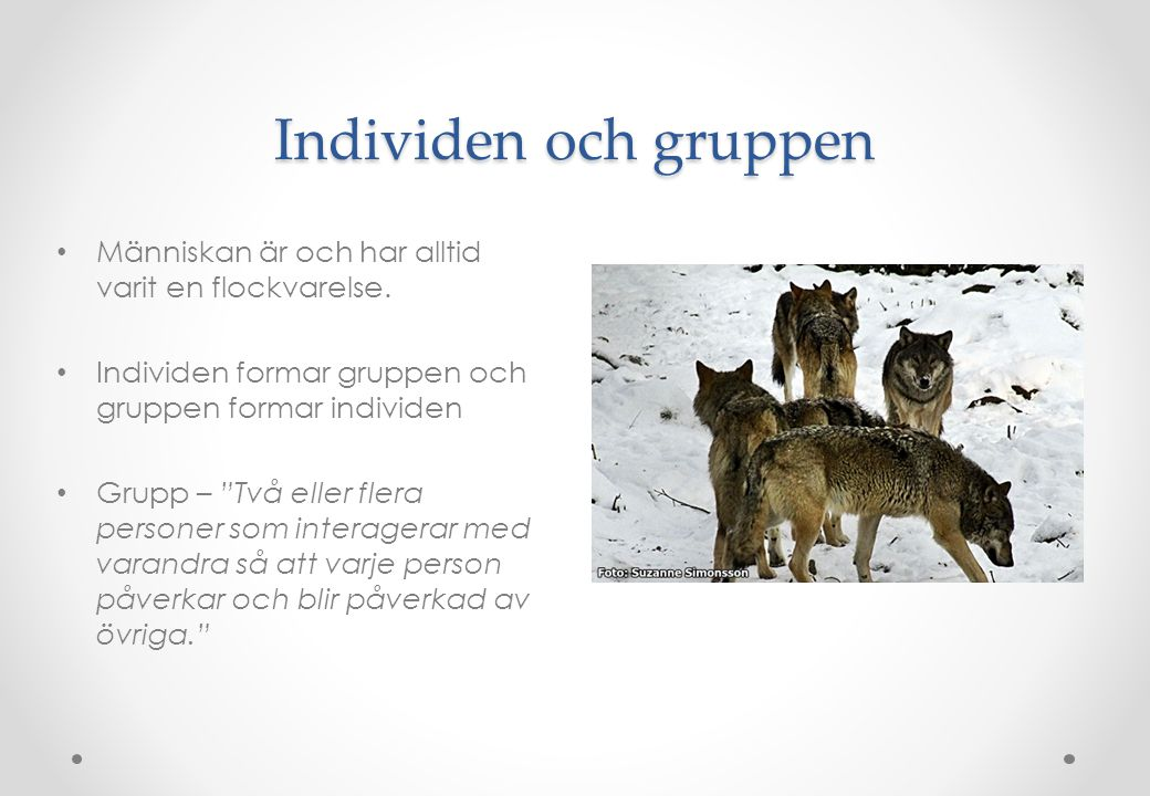 Individen och gruppen Människan är och har alltid varit en flockvarelse. Individen formar gruppen och gruppen formar individen.