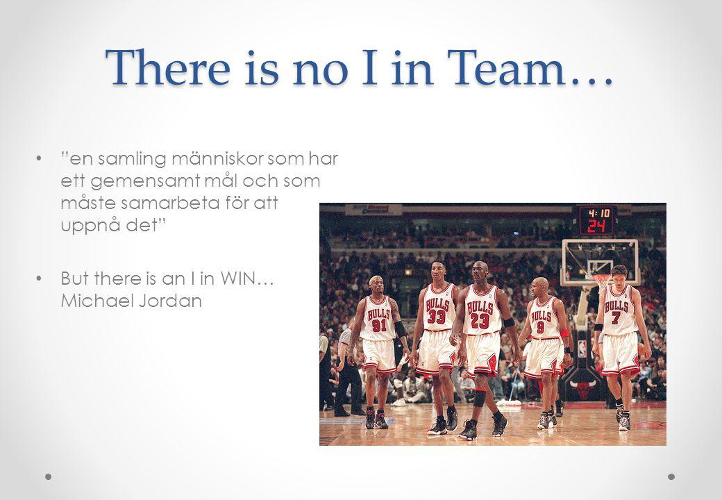 There is no I in Team… en samling människor som har ett gemensamt mål och som måste samarbeta för att uppnå det