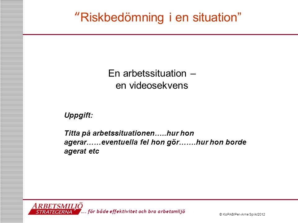 Riskbedömning i en situation
