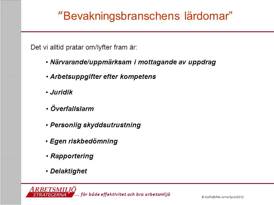 Bevakningsbranschens lärdomar