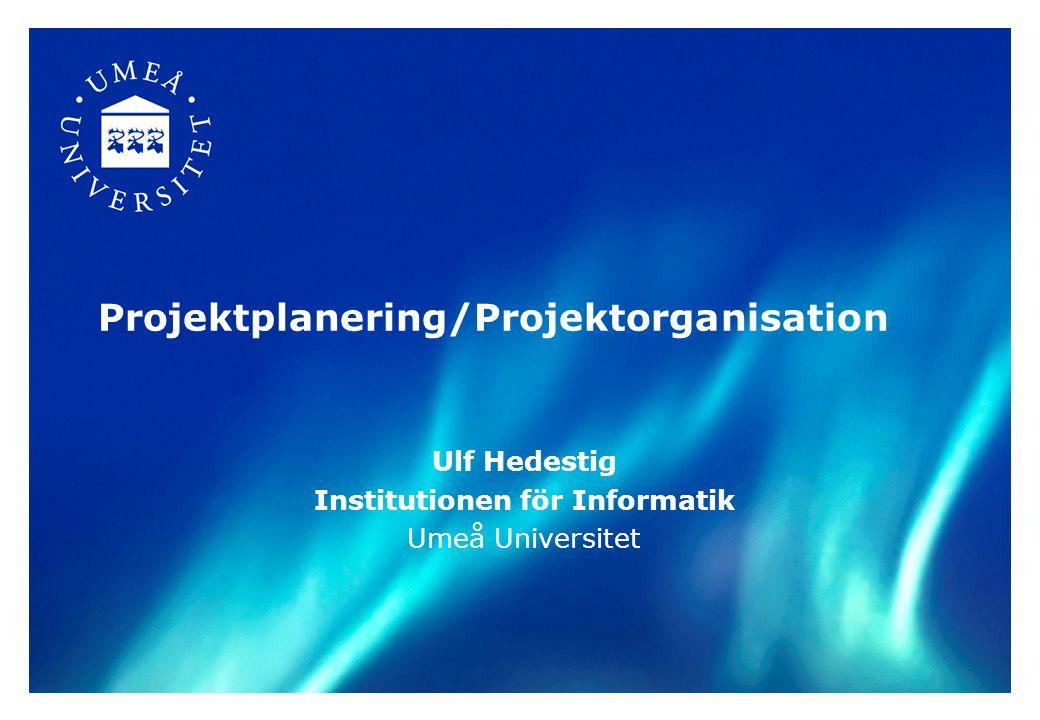 Projektplanering/Projektorganisation