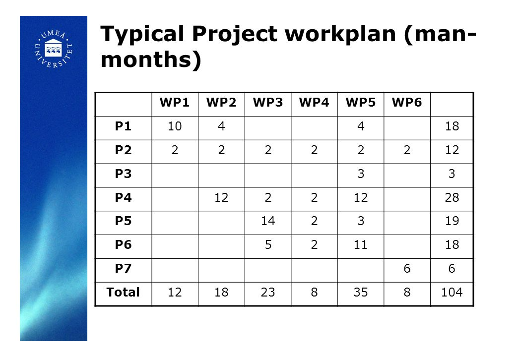 Typical Project workplan (man-months)