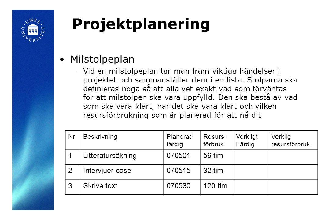 Projektplanering Milstolpeplan