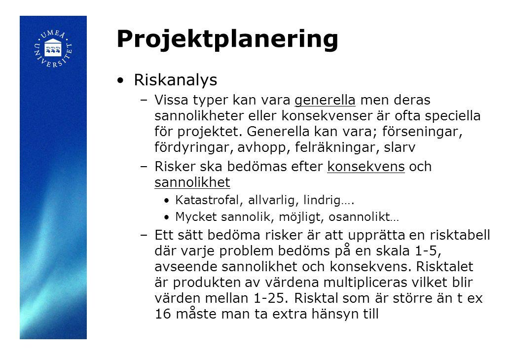 Projektplanering Riskanalys