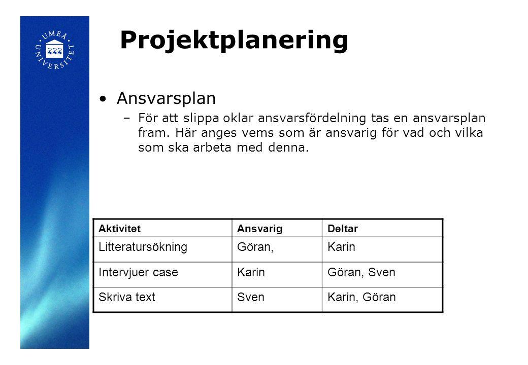 Projektplanering Ansvarsplan