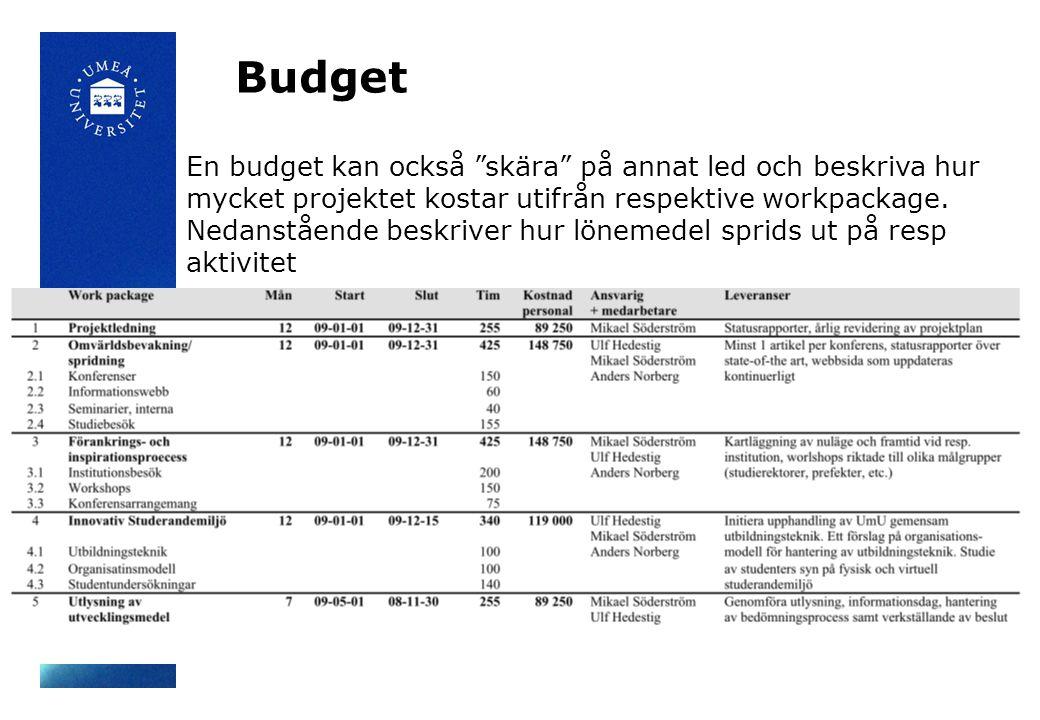 Budget En budget kan också skära på annat led och beskriva hur