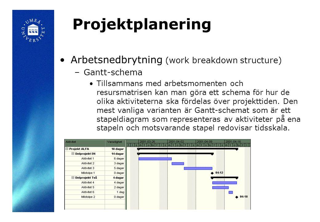 Projektplanering Arbetsnedbrytning (work breakdown structure)
