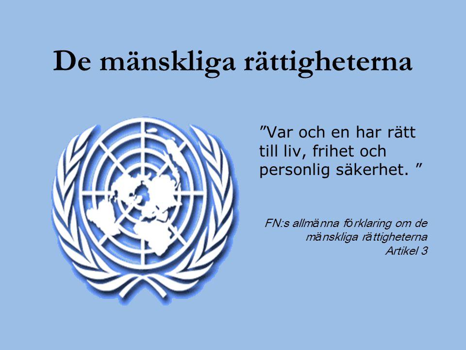 De mänskliga rättigheterna
