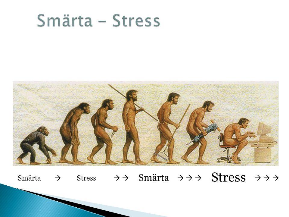 Smärta - Stress Stress Smärta Smärta  Stress        