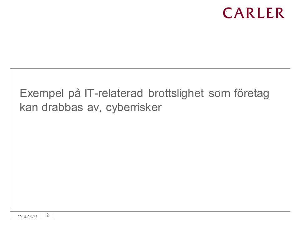 Exempel på IT-relaterad brottslighet som företag kan drabbas av, cyberrisker