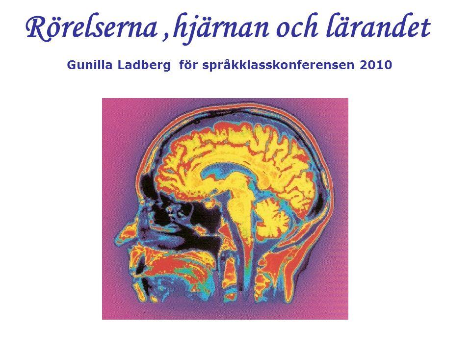 Rörelserna ,hjärnan och lärandet Gunilla Ladberg för språkklasskonferensen 2010
