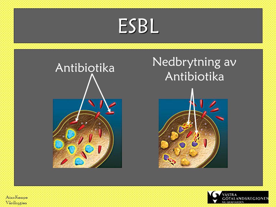 ESBL Antibiotika Nedbrytning av Antibiotika Aino Kempe Vårdhygien