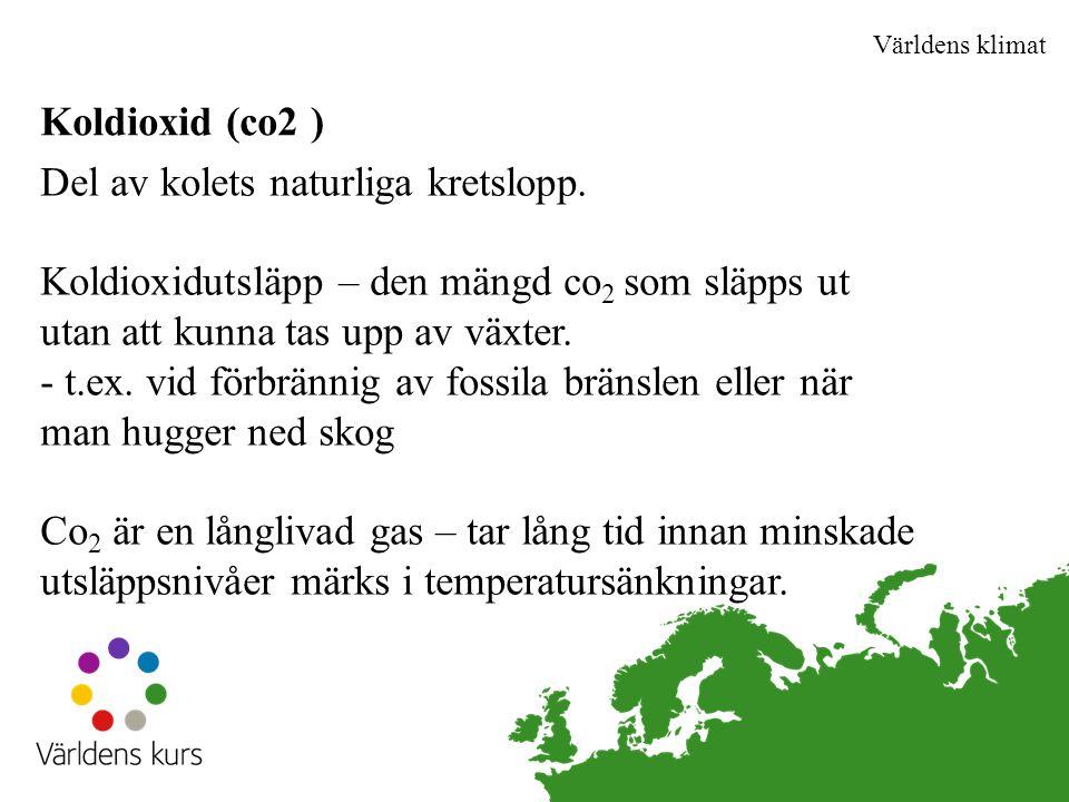 Världens klimat Koldioxid (co2 )