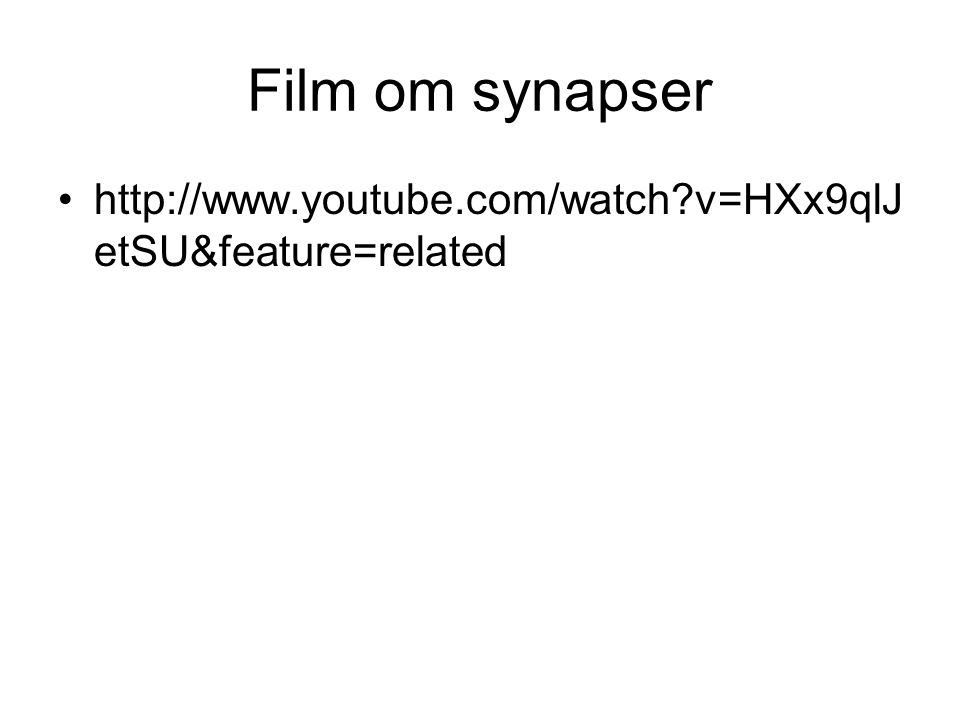 Film om synapser http://www.youtube.com/watch v=HXx9qlJetSU&feature=related