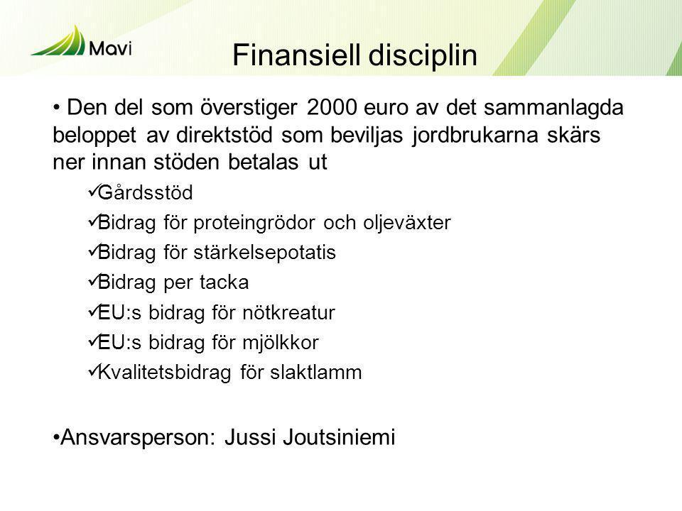 Finansiell disciplin