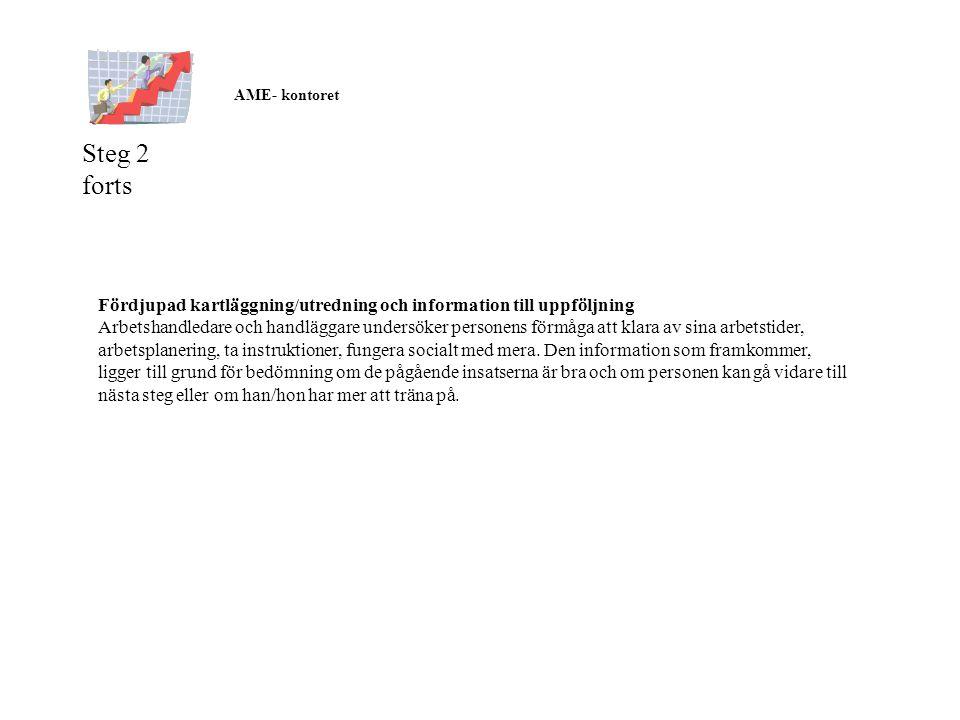 AME- kontoret. Steg 2 forts. Fördjupad kartläggning/utredning och information till uppföljning.