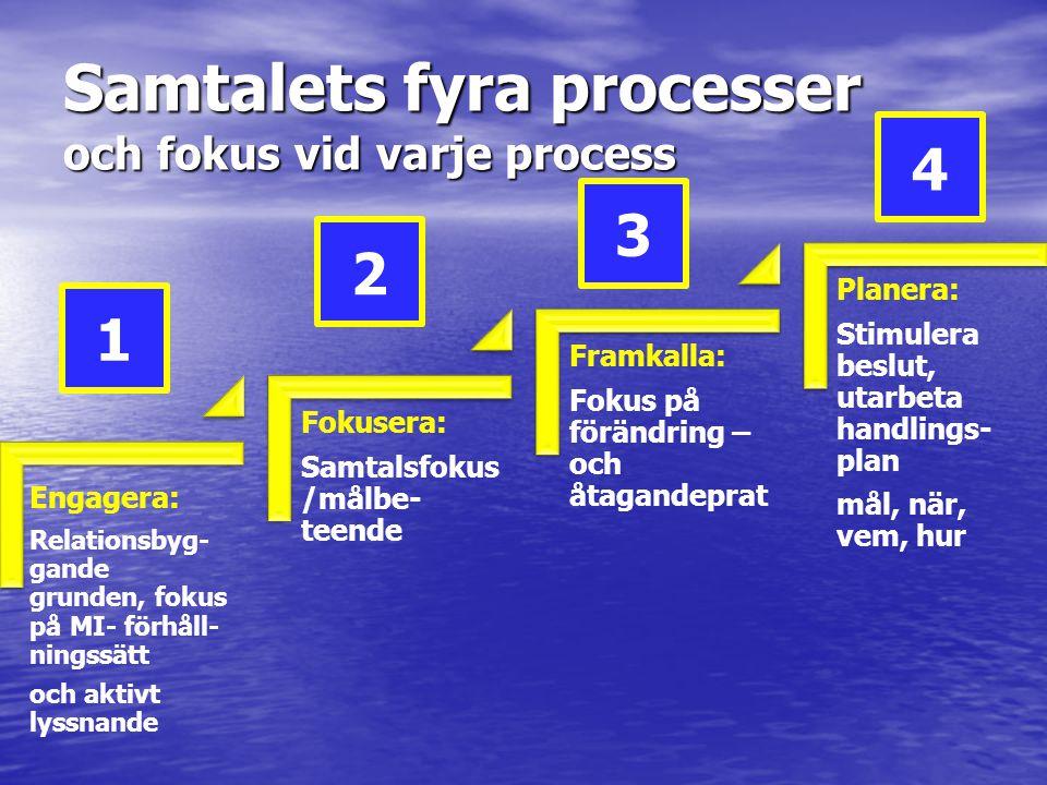 Samtalets fyra processer och fokus vid varje process