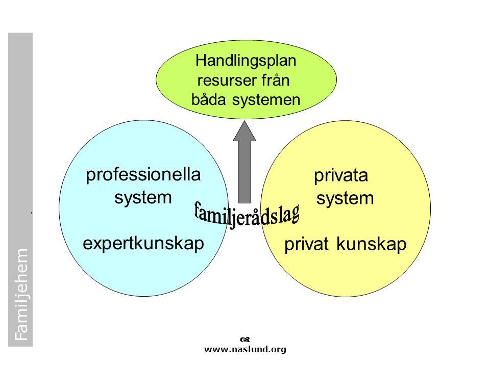 professionella privata system system expertkunskap privat kunskap
