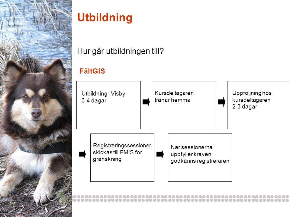 Utbildning Hur går utbildningen till FältGIS Utbildning i Visby