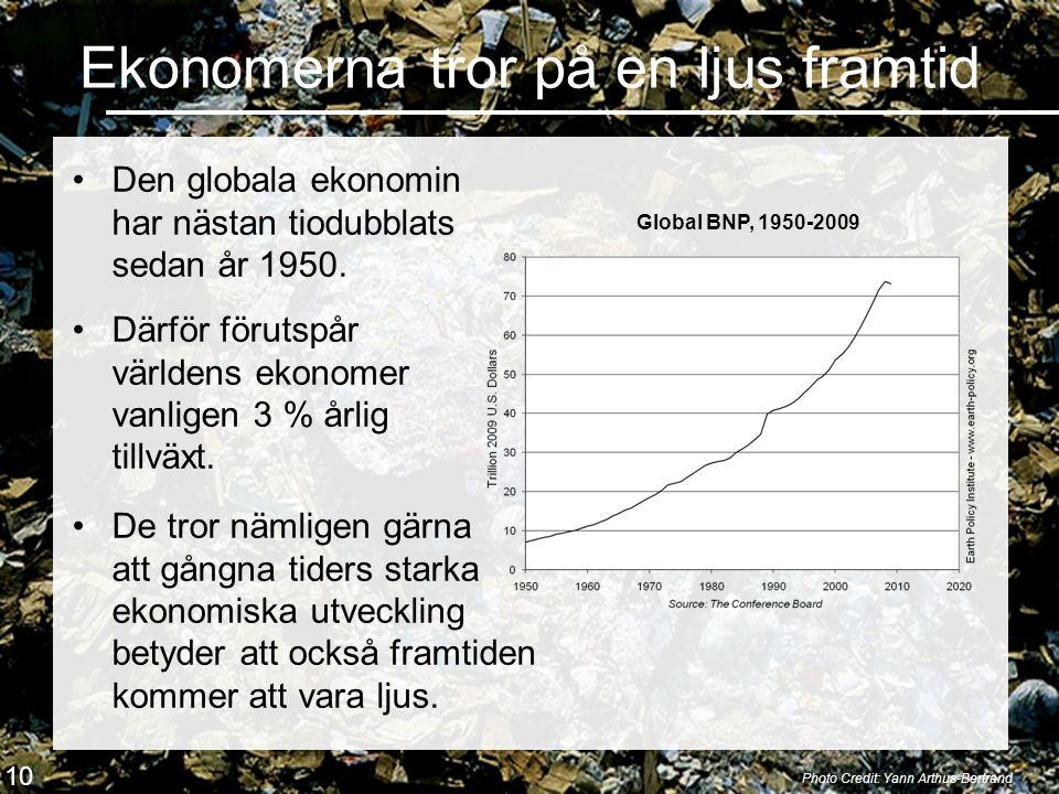 Ekonomerna tror på en ljus framtid