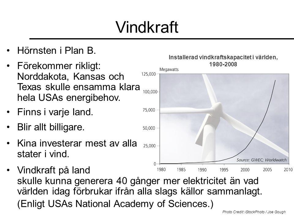 Installerad vindkraftskapacitet i världen, 1980-2008