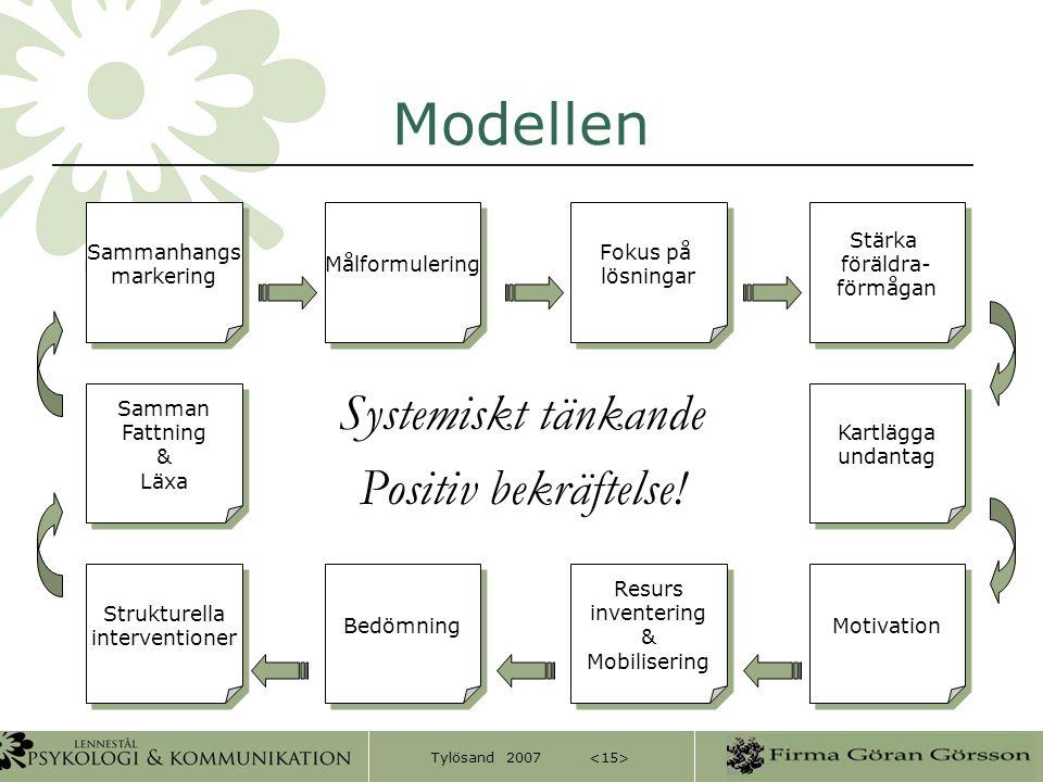 Modellen Systemiskt tänkande Positiv bekräftelse! Sammanhangs