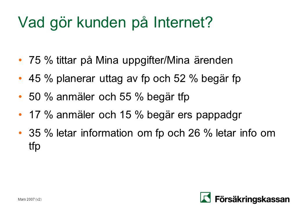 Vad gör kunden på Internet
