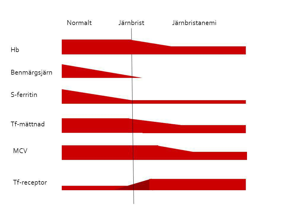 Normalt Järnbrist Järnbristanemi Hb Benmärgsjärn S-ferritin Tf-mättnad