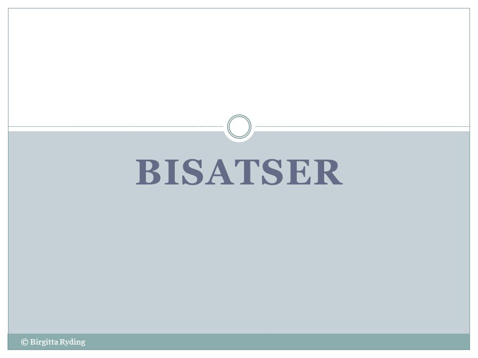 Bisatser © Birgitta Ryding