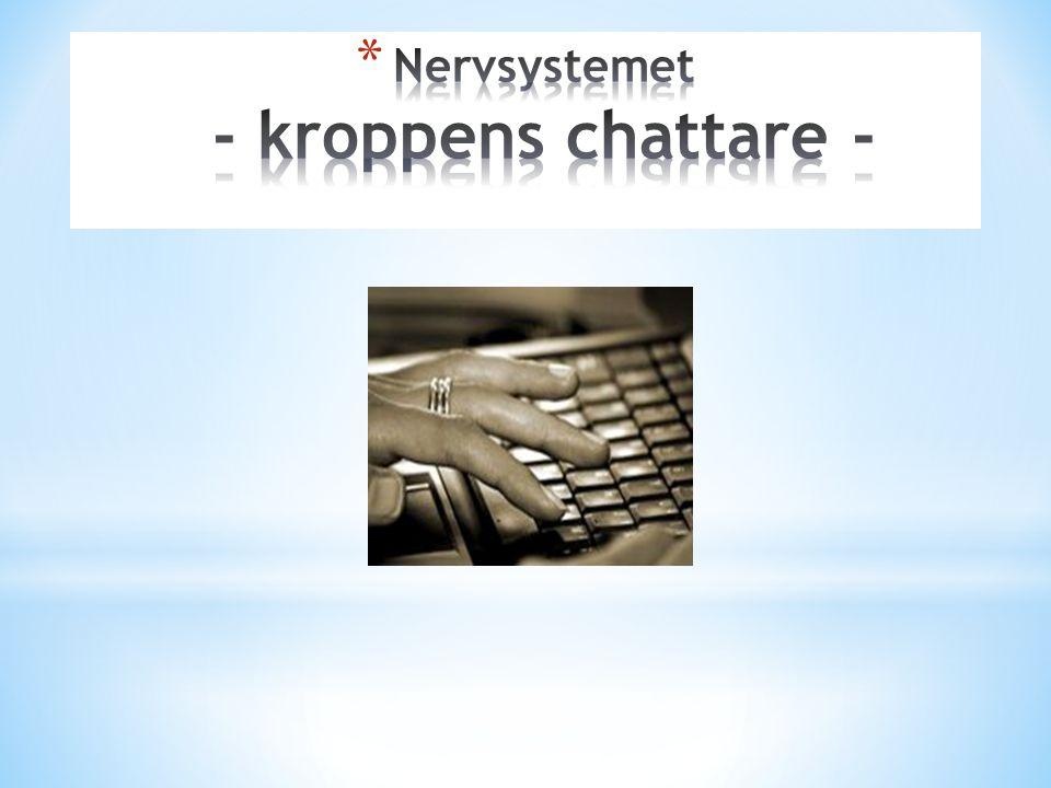 Nervsystemet - kroppens chattare -